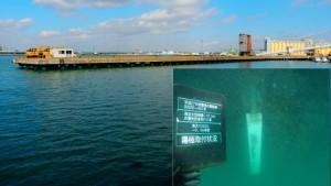 南浜大型桟橋